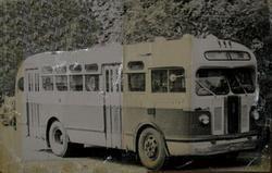 ЗиС-155 на маршруте №36